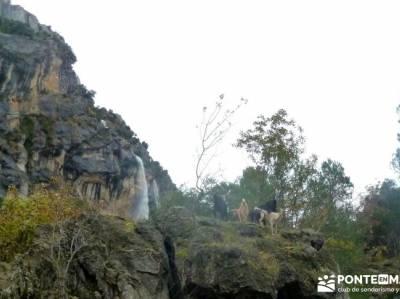 Cazorla - Río Borosa - Guadalquivir; senderismo almeria la najarra los cerezos en flor